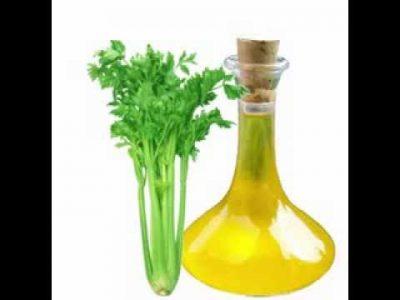 celery oil